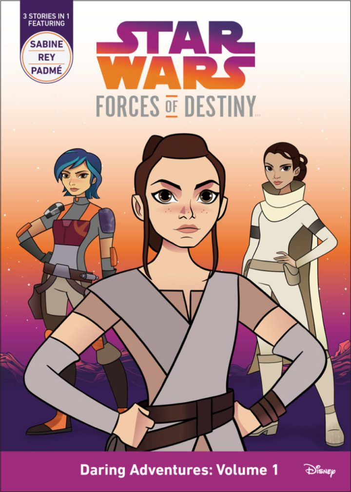 forces-of-destiny-book-rey-1-731x1024.jpg